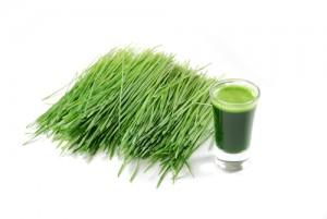 Juicing Wheatgrass